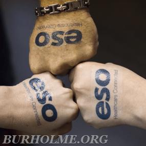 Team Burholme joins ESO Data Management